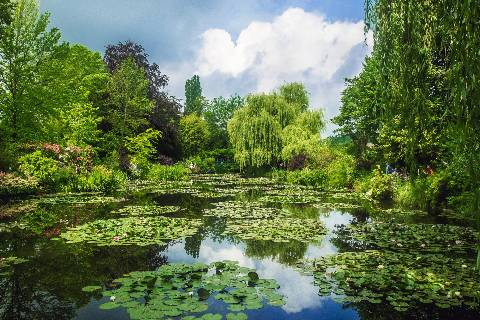 Giverny : Jardin Monet