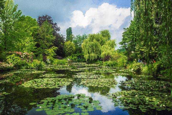 Giverny : Jardin Monet