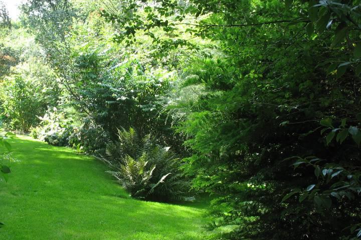 Beaumont-le-Hareng : Jardin Bellevue